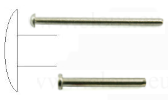 Straight cut stainless steel nail