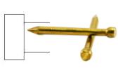 Lost head brass nail