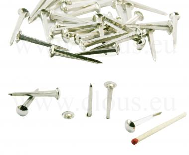 Dome head nickel coated nail L : 27 mm