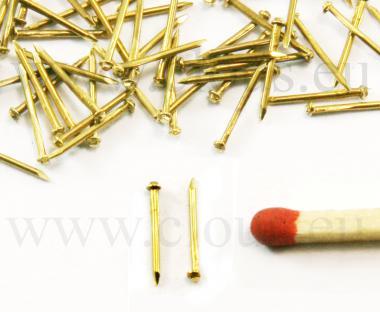 Rail screw head miniature brass nail (30g)
