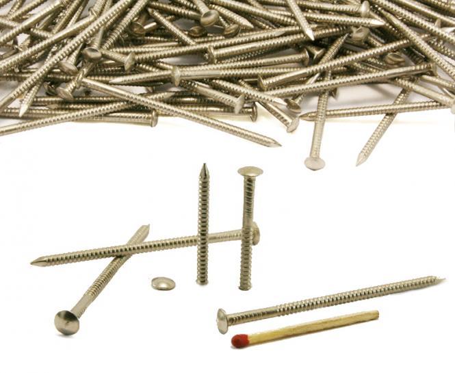 Round head annular stainless steel nail Ø 3.00 mm (1kg)