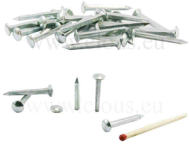 Dome head zinc coated nail L : 25 mm