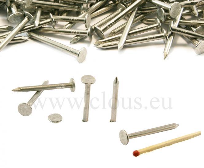 Extra large flat head aluminium nail