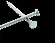 Flat head zinc coated steel nail Ø 1.5 mm (1kg) L : 20 mm - Ø 1.5 mm